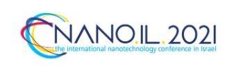 nanoil2010